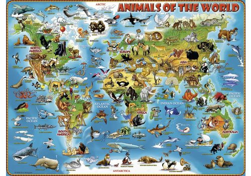 Animals of the world - 300 pieces