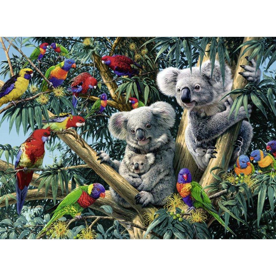 Koala's in de boom - 500 stukjes-1