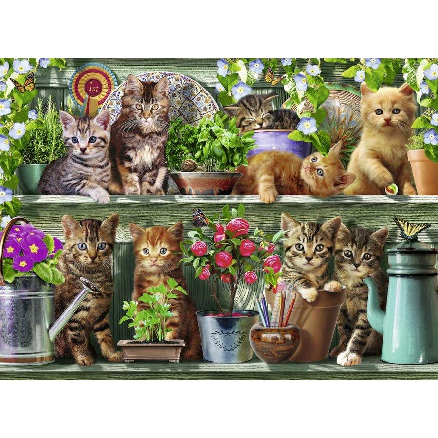 Katjes op het rek - 500 stukjes-1