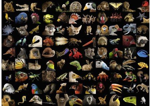 99 breathtaking animals - 1000 pieces
