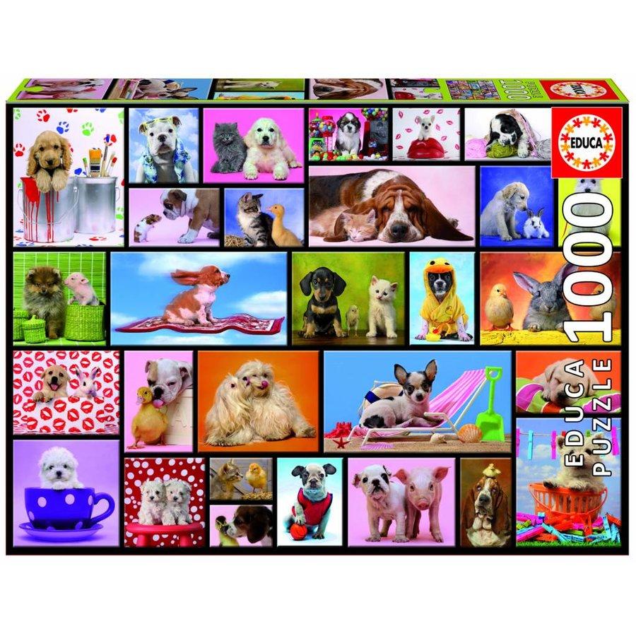Grappige dieren - puzzel van 1000 stukjes-2