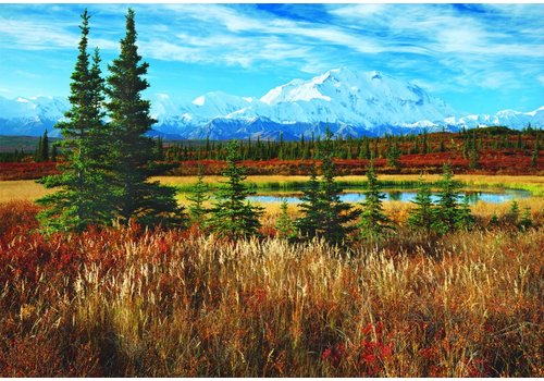 National Park Denali - USA - 1500 pieces