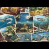 Cobble Hill Allemaal vissen - puzzel van 1000 stukjes