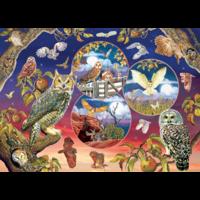 thumb-Magische uilen - puzzel van 1000 stukjes-1