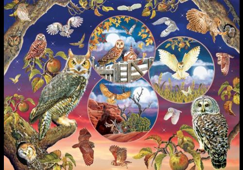 Magische uilen - 1000 stukjes