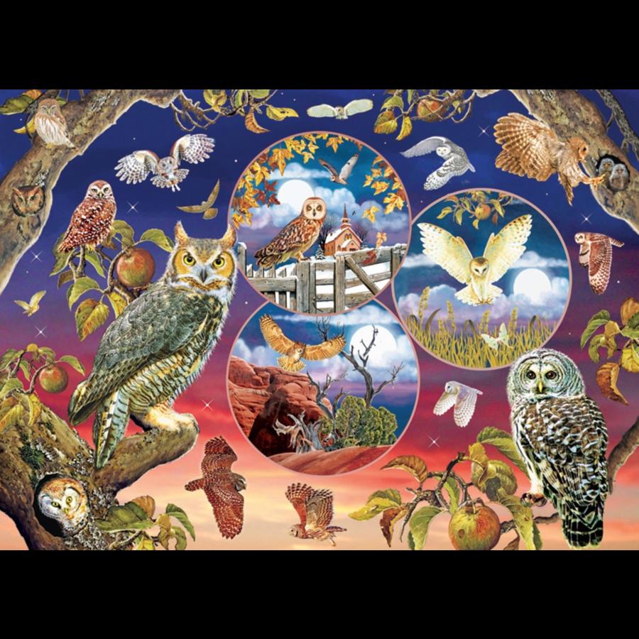 Magische uilen - puzzel van 1000 stukjes-1