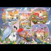 thumb-Magie des oiseaux d'eau  - puzzle de 1000 pièces-1