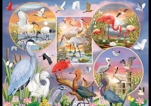 Magie des oiseaux d'eau  - 1000 pièces