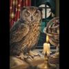 Cobble Hill L'astrologue  - puzzle de 1000 pièces