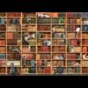 Cobble Hill La bibliothèque des chats - puzzle de 1000 pièces