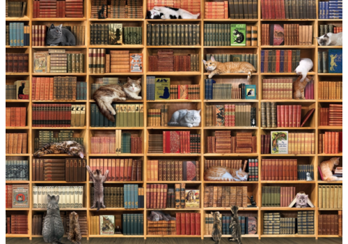 De kattenbibliotheek - 1000 stukjes