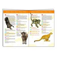 thumb-Dinosaurussen - puzzel van 100 stukjes-3