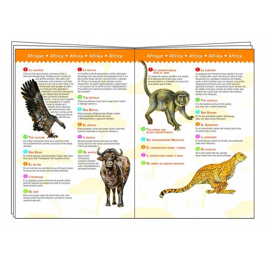 Dinosaurussen - puzzel van 100 stukjes-3