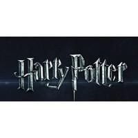 thumb-Harry Potter - The Burrow - puzzle 3D-5