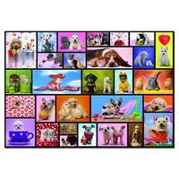 thumb-Grappige dieren - puzzel van 1000 stukjes-1
