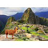 Educa Machu Picchu - Peru  -  jigsaw puzzle of 1000 pieces