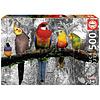 Educa Vogels in de jungle  - zwart/wit - legpuzzel van 500 stukjes