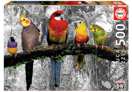 Educa Oiseaux dans la jungle - 500 pièces