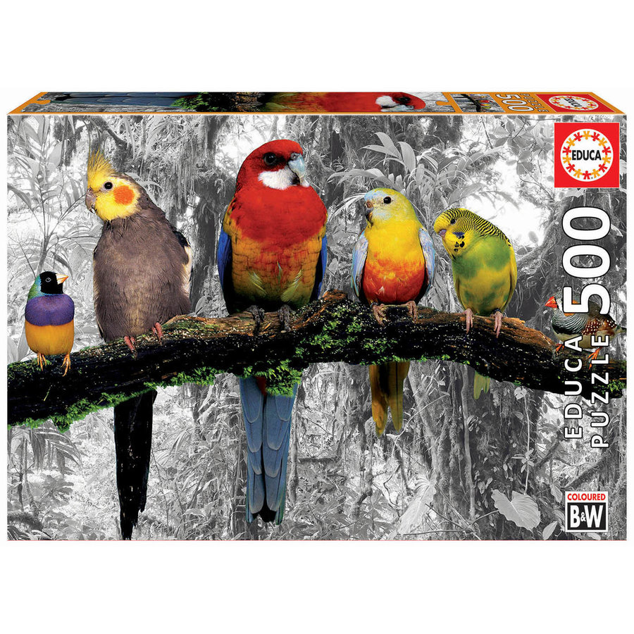 Oiseaux dans la jungle - noir/blanc - puzzle de 500 pièces-1