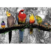 thumb-Vogels in de jungle  - zwart/wit - legpuzzel van 500 stukjes-2