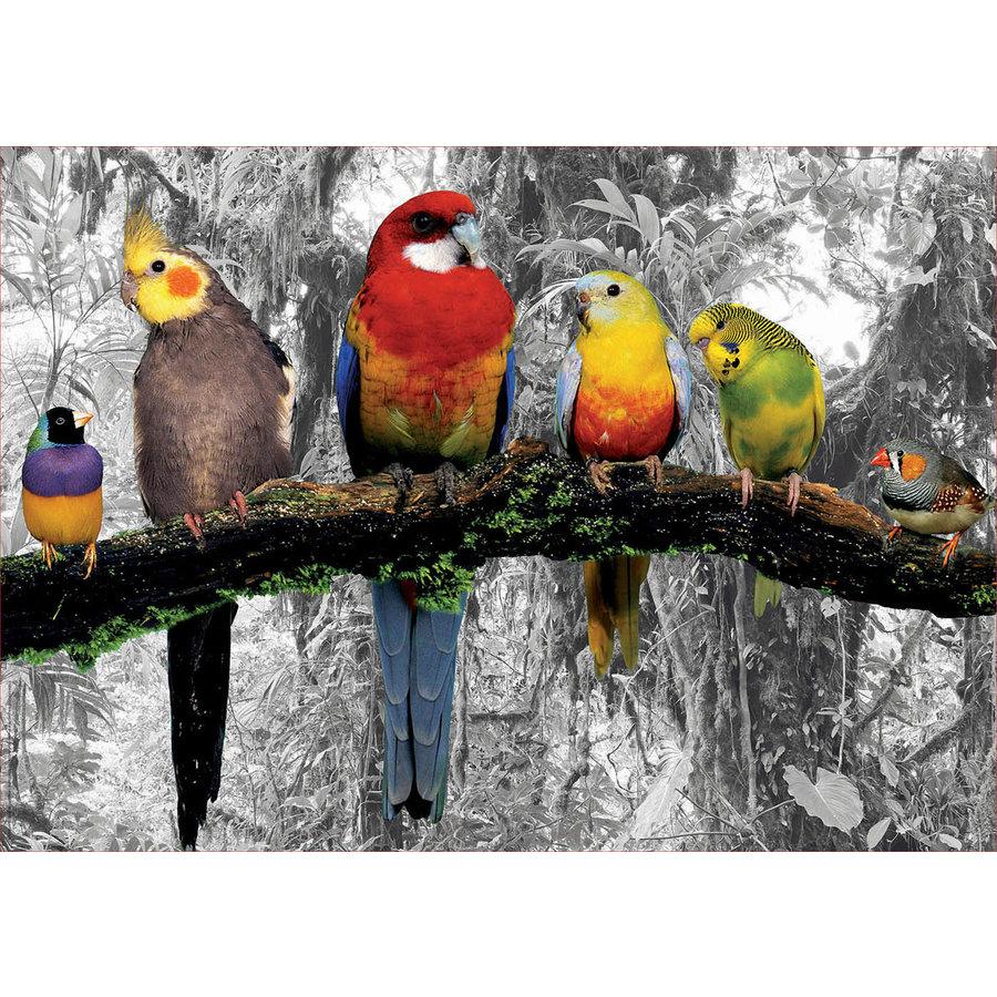 Oiseaux dans la jungle - noir/blanc - puzzle de 500 pièces-2