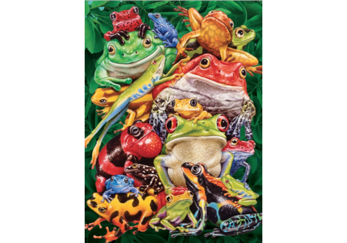 Frog Business - 1000 pieces