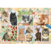 Jumbo Cats Stamps - puzzle of 1000 pieces