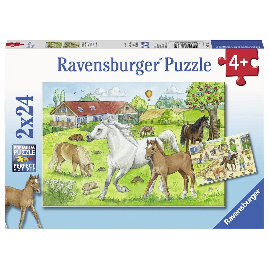 Op de manege - 2 puzzels van 24 stukjes-1
