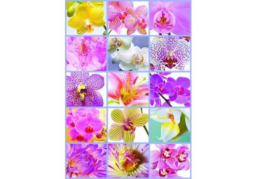Allemaal bloemen - 1500 stukjes