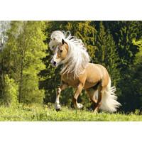 thumb-Vrolijk paard - puzzel 1000 stukjes-1