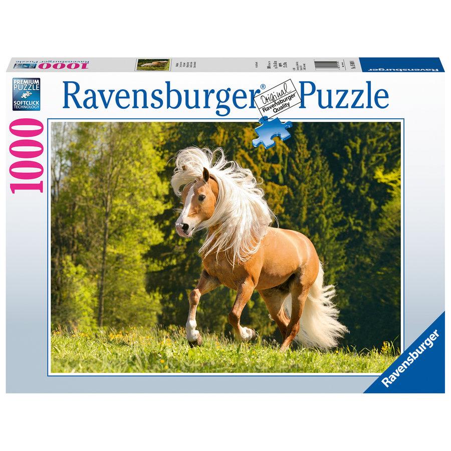 Cheval joyeux - 1000 pièces de puzzle-2