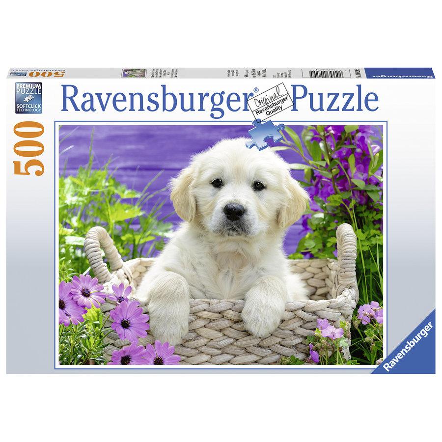 Cute Golden Retriever - 500 pieces-2