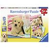 Ravensburger Schattige puppy's  - 3 puzzels van 49 stukjes