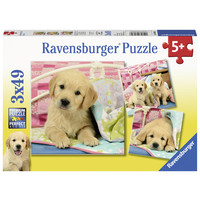 thumb-Schattige puppy's  - 3 puzzels van 49 stukjes-1