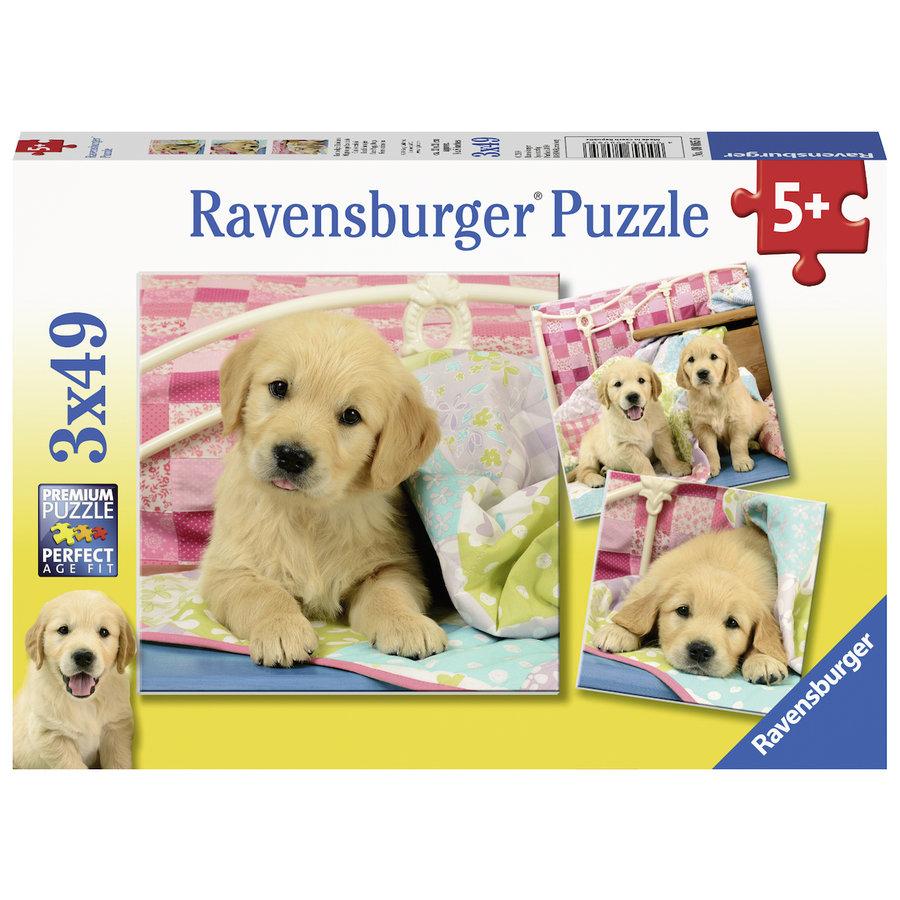 Schattige puppy's  - 3 puzzels van 49 stukjes-1