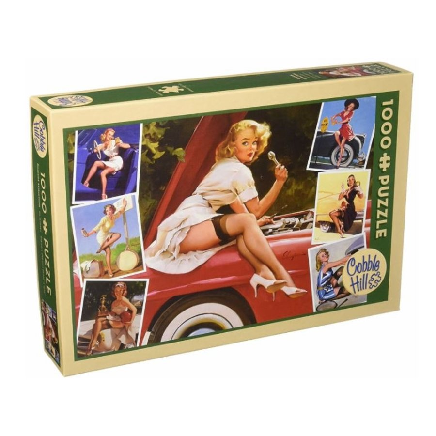Roadside Attractions - puzzle of 1000 pieces-1