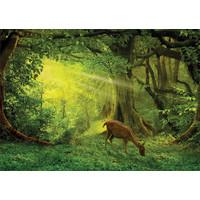 thumb-Hertje in het bos - legpuzzel van 500 stukjes-2