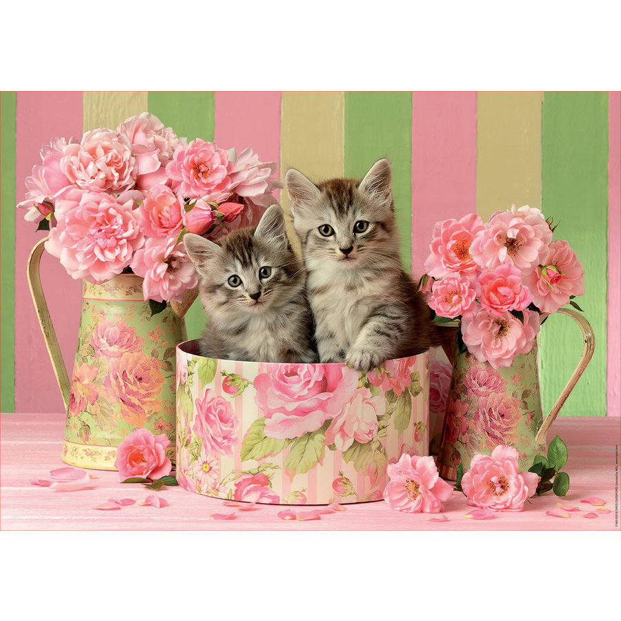 Kittens between the roses - jigsaw puzzle of 500 pieces-2