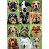 thumb-Allemaal honden - legpuzzel van 500 stukjes-1