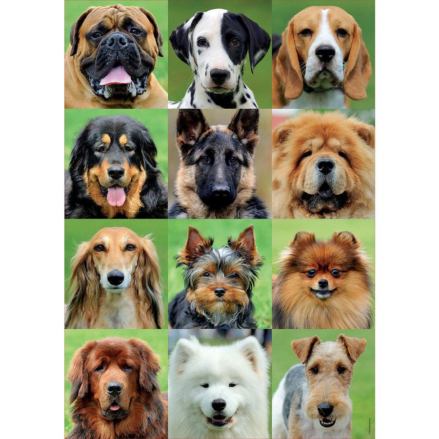 Allemaal honden - legpuzzel van 500 stukjes-1
