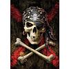 Educa Doodskop van de piraat  - legpuzzel van 500 stukjes