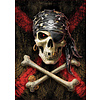 Educa Skull of the pirate  -  jigsaw puzzle of 500 pieces