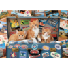 Educa Kittens on a holiday - puzzle of 200 pieces