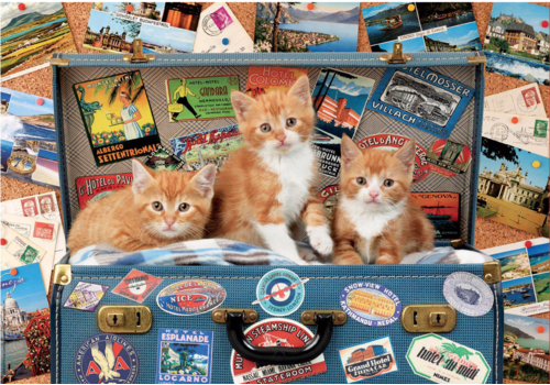 Kittens on a holiday - puzzle of 200 pieces
