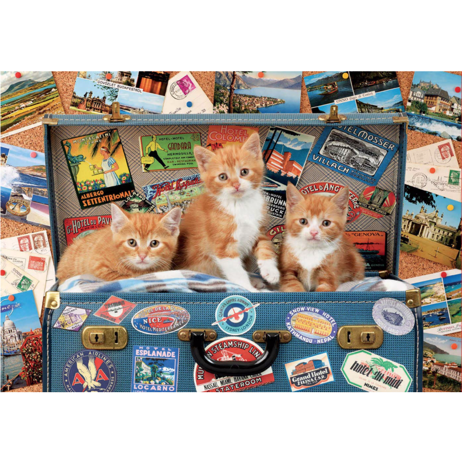 Kittens on a holiday - puzzle of 200 pieces-1
