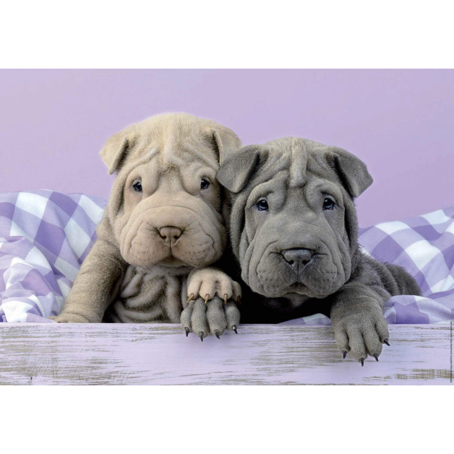 Goedemorgen hondjes - puzzel van 100 stukjes-2