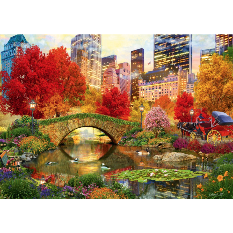 Central Park in New York - puzzle of 4000 pieces-1