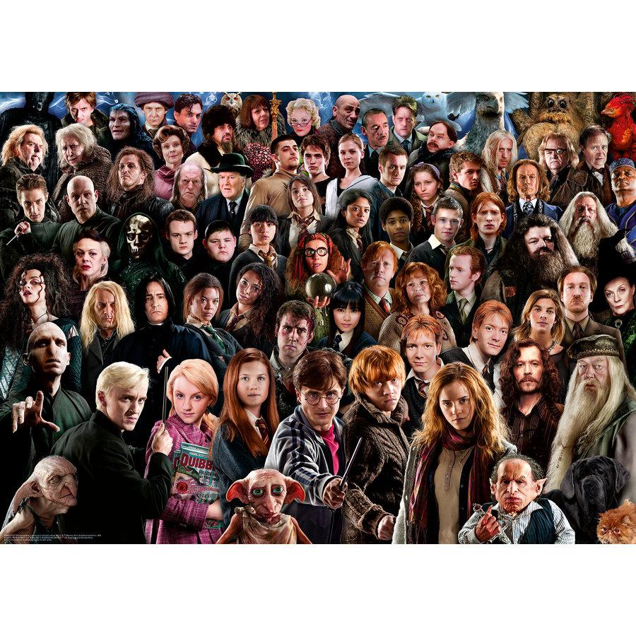 Harry Potter - Challenge -  puzzel van  1000 stukjes-1