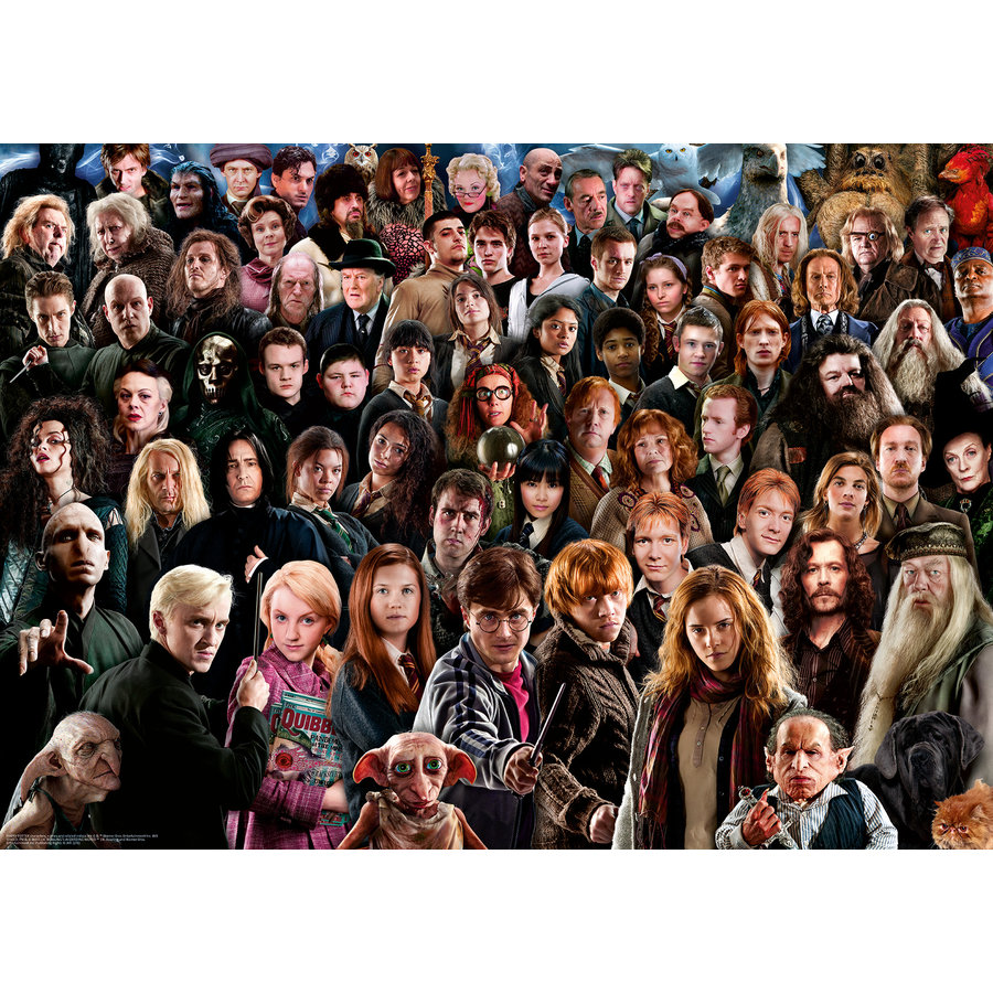 Harry Potter - Challenge -  puzzle de 1000 pièces-1