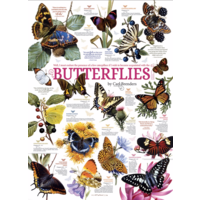 thumb-Butterfly Quotes - 1000 pieces-1